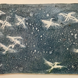 Anne D. Marble: Night Migration