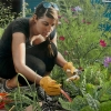 Mary Henderson: Community Garden
