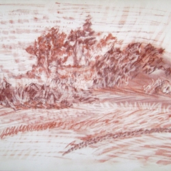 Barbara Gesshel: Distant Trees Study