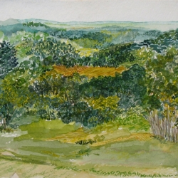Barbara Gesshel: View From Arie's Porch