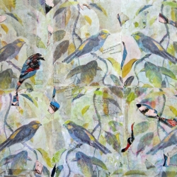 Rosalind Bloom: Birdsong Still