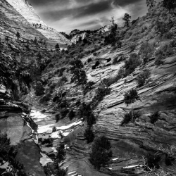 Christopher Brown: Zion National Park Layers in the Rock
