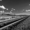 Christopher Brown: Train Tracks through the Desert