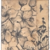 Jodi Cachia: Flowers and Crows