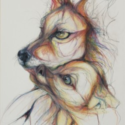 Cassandra Petruchyk: Mother and Child-(Red Wolf study/endangered species series)