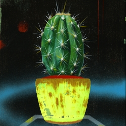 Untitled (small cactus 1)