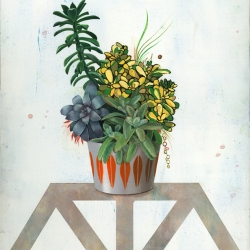 Untitled (White Succulents 3)