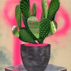 Untitled (Pink Cactus)