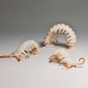 Emily Cobb: Insectophobia: The Centipede