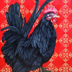 Eric Fausnacht: 1-bantam-single-comb-japanese-black-2007