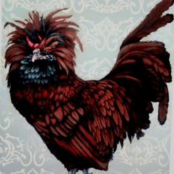 Eric Fausnacht: 9-golden-polish-rooster-2007