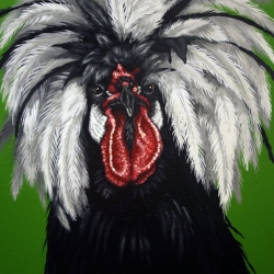Eric Fausnacht: White Crested Black Polish Rooster