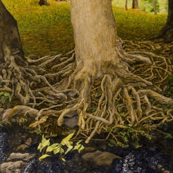Gary Grissom: Morris Park Tree Roots
