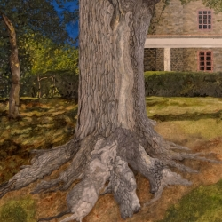 Gary Grissom: 64th Street Tree & House