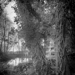Geoffrey Agrons: Flooded Grotto