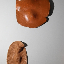 Gilvan Nunes: Ceramics for the Wall II