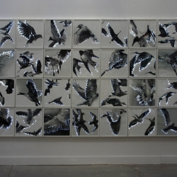 Lyn Godley: InFlight, Art68 Gallery, Cologne Germany