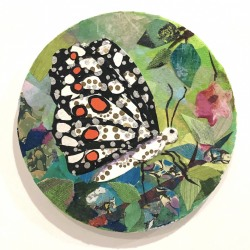 Phyllis Gorsen: Black and White Butterfly
