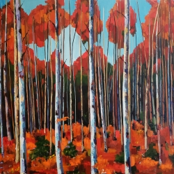 "Jenn Hallgren: Birch Forest (40"" x 40"")"