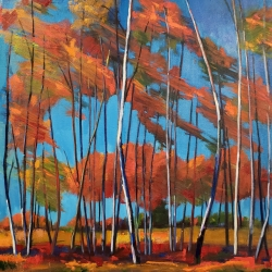 Jenn Hallgren: Windy Birch Patch