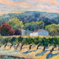 Helene Halstuch: Vines at Sunset
