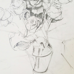 Jenn Hallgren: Roses Drawing