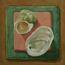 Lauren J. Sweeney: Companion Shells