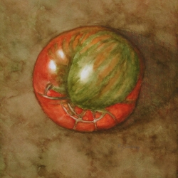 Lauren J. Sweeney: Heirloom Tomato in Red and Green
