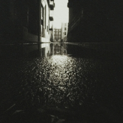 Laurie Beck Peterson: Alley