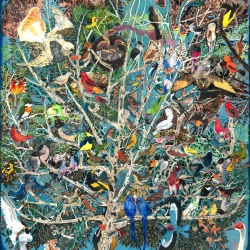 Enzhao Liu: Millions of Birds