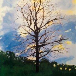 Mary Powers Holt: Evening Branches