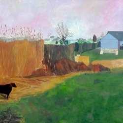 Mary Powers Holt: A Walk In the Field