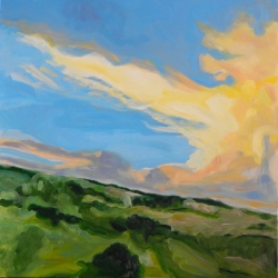 Mary Powers Holt: Fire Sky Patterns