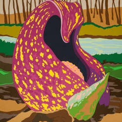 Joseph Opshinsky: Skunk Cabbage