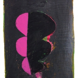 Dolores Poacelli: Pink Loops