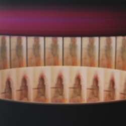 Leah Reynolds: Zoetrope (M) in motion