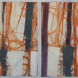 Rob Solomon: abstract diptych 1a8