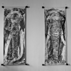 Colleen Rudolf: Les Elephants
