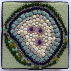 Teresa Shields: Green Cell Structure