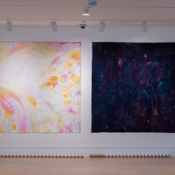 Suji Kanneganti: morning dew, may, 5am; forest, june, 8:37pm (installation view)