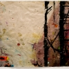 Susan Abrams: Accidental Abstraction #1