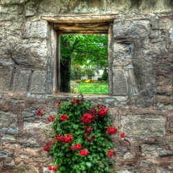 Mark D. Thellmann: Window in Wall