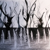 Trish Thompson: Fractured Fountains