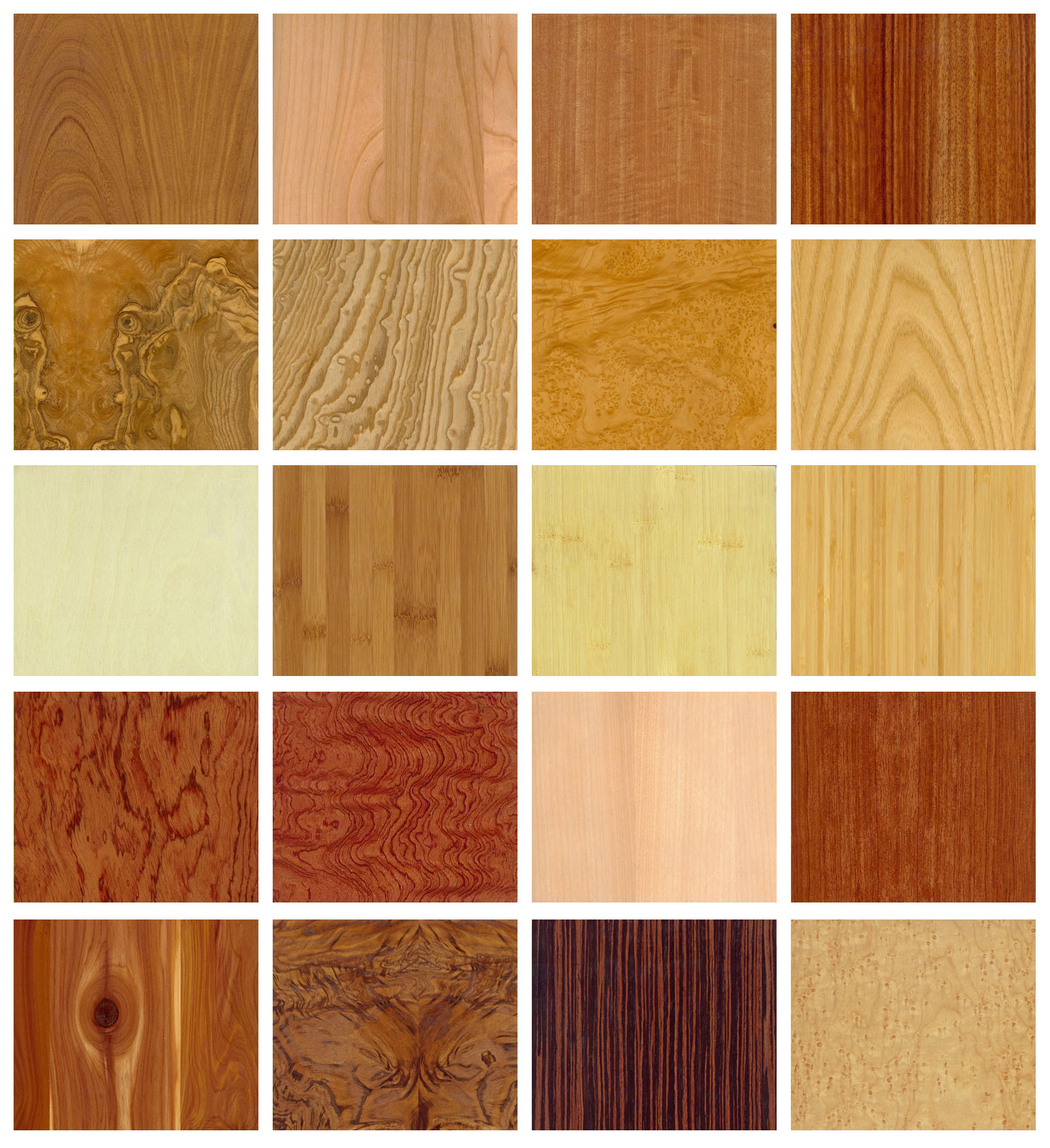 Various wood types