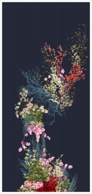 """Falling by Sarah Zwerling: 20"""" x 9,"""" Archival Print"""