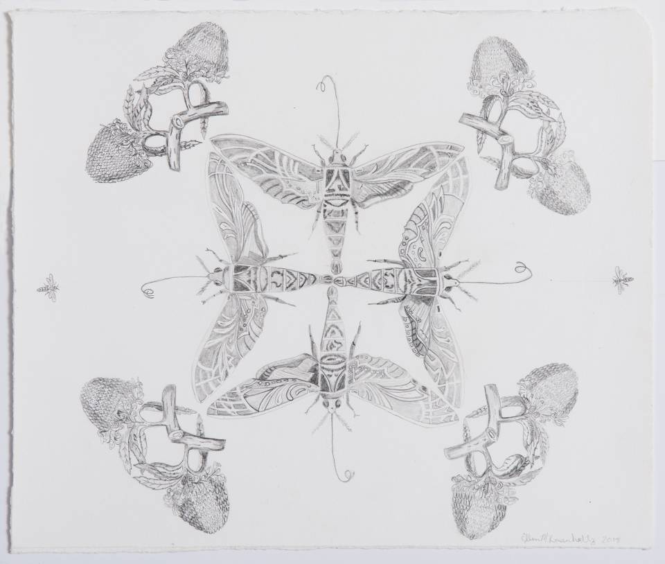 Ellen Rosenholtz's graphite on paper series explores native flora and fauna of New Jersey. The work looks at the profound beauty of natural forms as it exists within animals and plants. The multiplicity of images underscore the interconnection of living systems, while geometric patterning enable the viewer to identify each of the species through repetition of form.